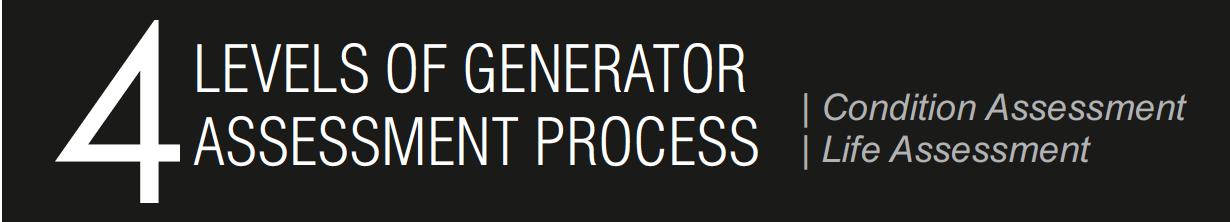 4 levels of Generators Assessment process