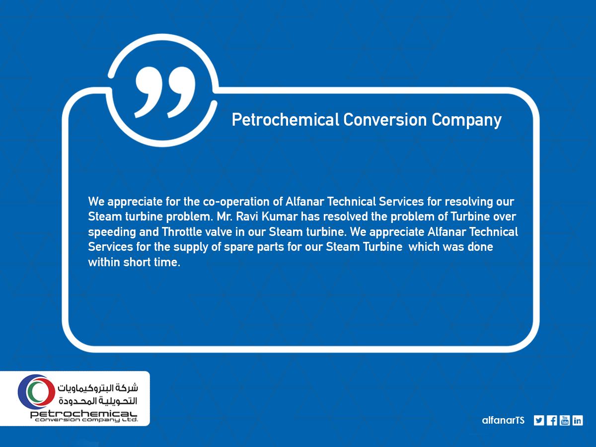 Petrochemical Conversion